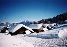 Ski in Vorarlberg, Austria, snow covered chalets in the Austrian Alps close to Bregenzerwald and Lech