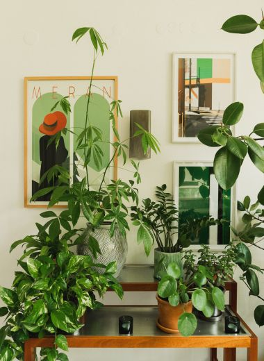 Indoor Planting | Villa Fluggi | Private Holiday House Merano, Italy | The Aficionados