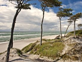 The Baltic coastline of Germany is wild, wonderful and full of nature to explore including thathced cottages of Ostseebad.