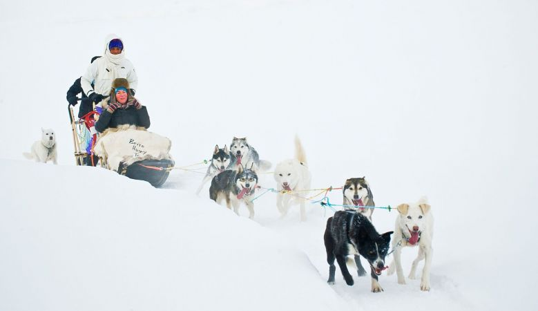 Jotunheimen National Park husky-sledding in Norway