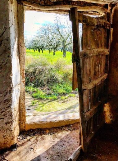 Getting close to the rural life of Mallorca with Mimo tours - open farm door