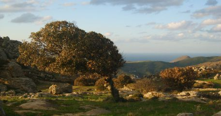 Tinos - landscapes of the Greek island in the Cyclades.